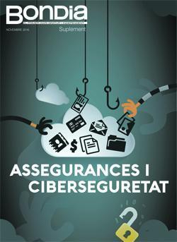 Suplement Assegurances i ciberseguretat