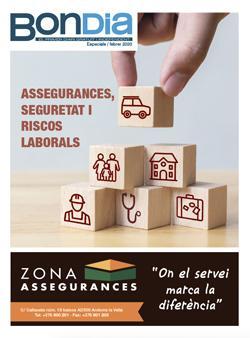Especial Assegurances, seguretat i riscos laborals 2020