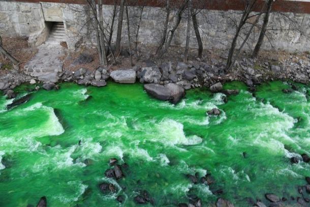 La investigació per esclarir l'origen de la contaminació de la font d'Arinsal tenyeix el riu de verd