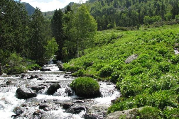 El Cenma organitza quatre activitats en quatre punts diferents en el Dia mundial de la biodiversitat