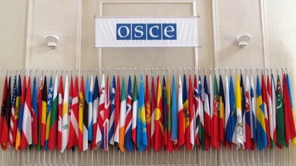 Organització per a la Seguretat i la Cooperació a Europa (OSCE).