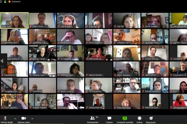 Un moment de la reunió telemàtica per elaborar el Llibre blanc.