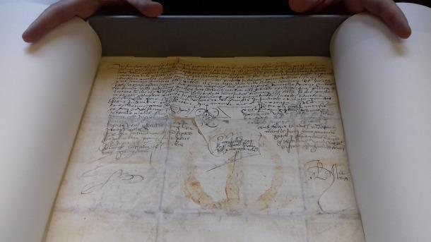 Privilegi atorgat el 3 de juny del 1503 pel rei Ferran el Catòlic, que insistia que els terrenys de la Solana pertanyen als comuns d'Encamp i Canillo.