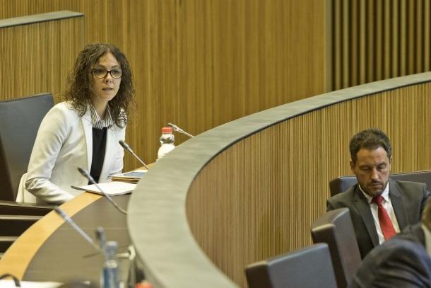 Els consellers generals del PS Judith Salazar i Pere López en una sessió parlamentària.