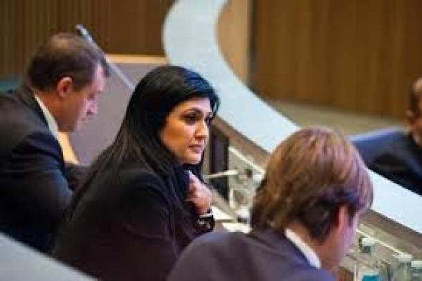 La consellera general Carine Montaner, al Consell