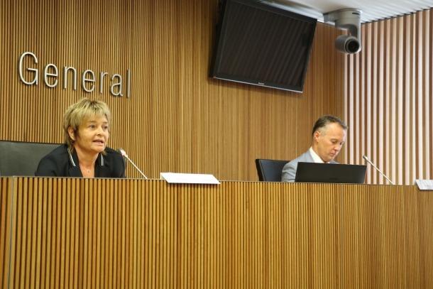 El president de la comissió legislativa d'Educació, Recerca, Cultura, Joventut i Esports, Ferran Costa, i la subsíndica general, Meritxell Palmitjavila.