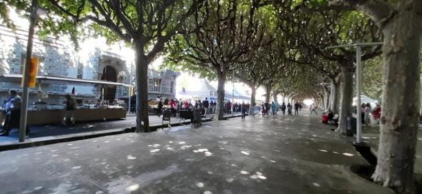 El mercat de la Seu aquest matí, al passeig Joan Brudieu