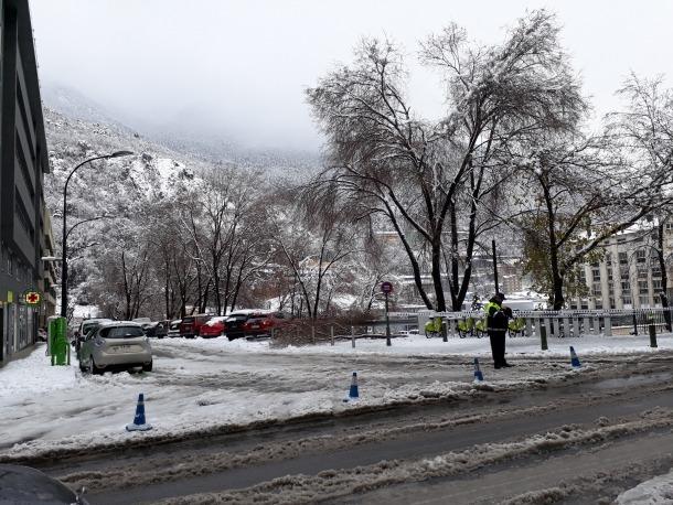 Un arbre caigut a Andorra la Vella.