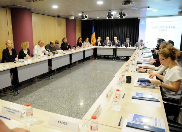 Presideix el Conadis el cap de Govern i en formen part associacions diverses, com la FAAD, la CASS i el SAAS, entre d'altres.