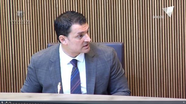 El ministre de Presidència, Economia i Empresa, Jordi Gallardo, ahir al Consell General.