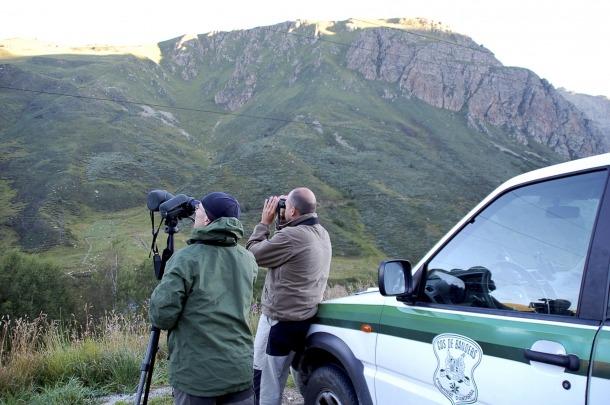 En cas que hi hagi captures restants se sortejaran entre els 93 caçadors que han col·laborat en els censos.
