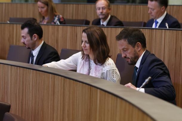Els parlamentaris del Partit Socialdemòcrata en una sessió del Consell General.