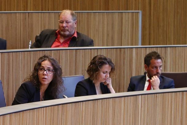 El grup parlamentari socialdemòcrata en una sessió del Consell General.