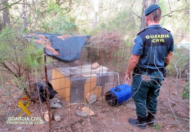 Denunciat un resident per posar gàbies parany en un espai natural de la Noguera