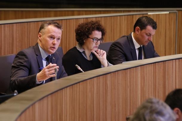 El parlamentari del grup liberal Ferran Costa en una intervenció al Consell General.