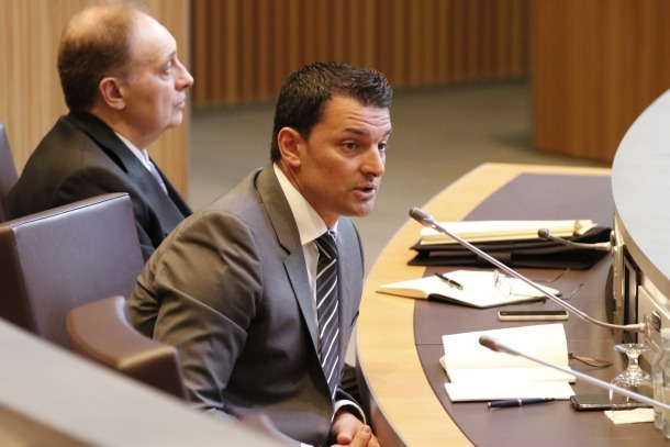 Gallardo presidirà el 'nou' grup liberal i Pallarés en serà la presidenta suplent