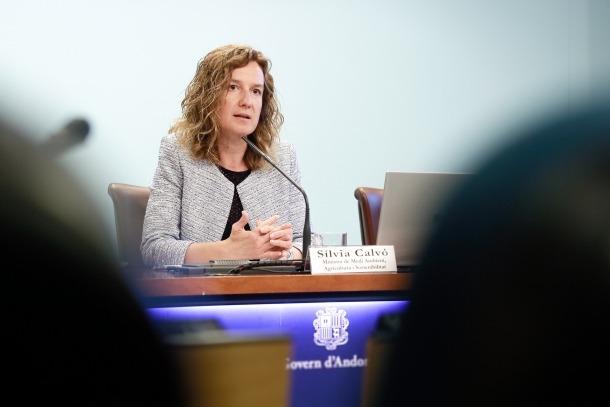 La ministra Sílvia Calvó va donar a conèixer ahir els detalls del projecte de llei.