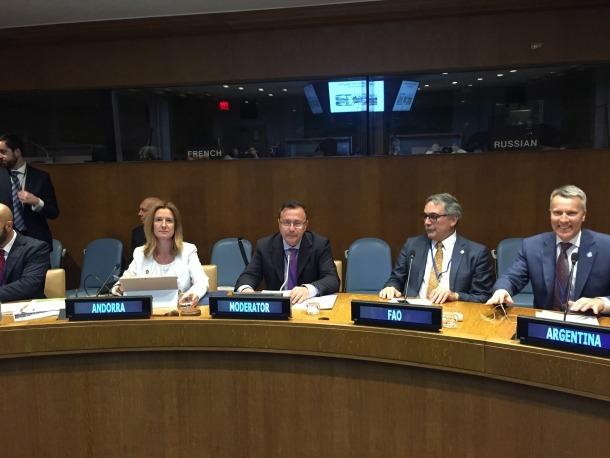 La ministra Calvó va explicar a l'Ecosoc els resultats recopilats en els vuit ODS dedicats al medi ambient i a l'educació.