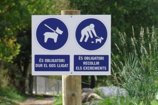 Canillo prohibeix anar amb el gos al domini de les estacions