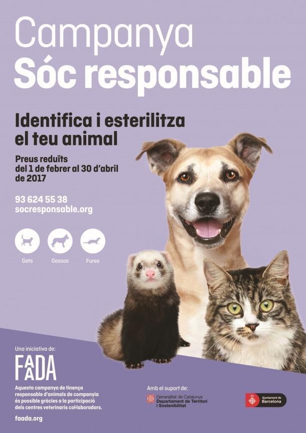 La Seu col·labora en la campanya de tinença responsable d'animals