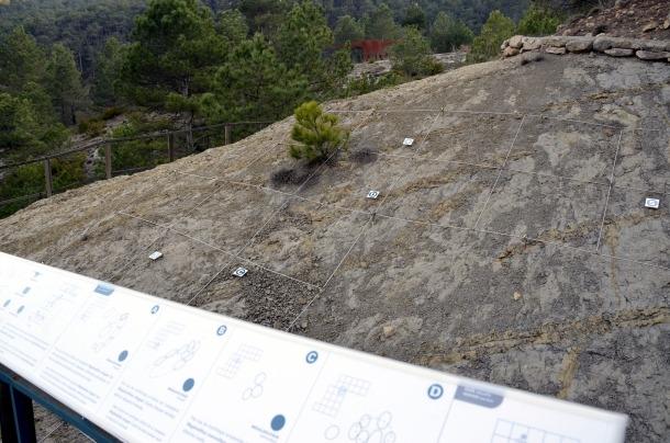 La Dinosfera espera finançament per refer el Mirador del Cretaci