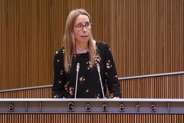 """Sílvia Bonet considera que el que fa ara SDP és """"un atac personal"""""""