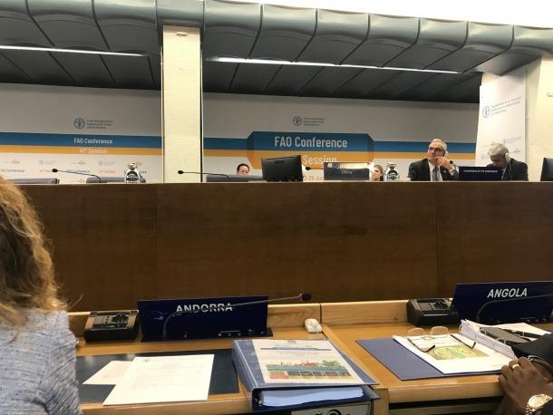 Sílvia Calvó i Marc Rossell van participar en la 41a sessió de la FAO a Roma.
