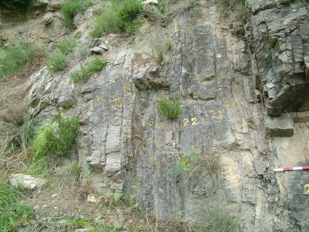 La Seu d'Urgell acollirà demà una trobada geològica mundial
