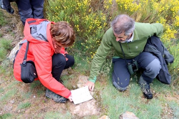Dues persones intenten identificar unes petjades d'animals.