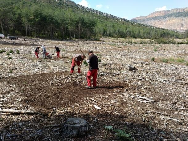 Operaris treballant a la Reserva de Boumort.