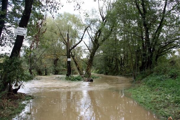 El riu Segre a la zona del pont de la Palanca, als termes de Ger i Das.
