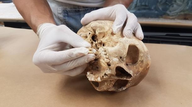 L'arqueòleg Gerard Remolins examina el crani de la dona exhumada a la cista 3 de la Feixa del Moro.