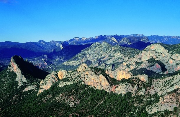 Vista de la muntanya d'Alinyà.