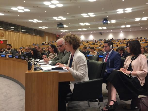 La ministra Ubach al Fòrum de l'Ecosoc.