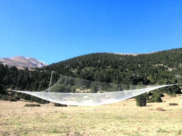 Andorra, land art, Moles, Gusí, Mereig, Rossell, xarxa antimeteorit