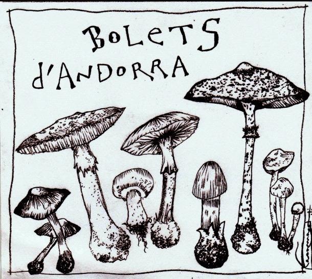 Bolets d'Andorra, bolets dels Urals