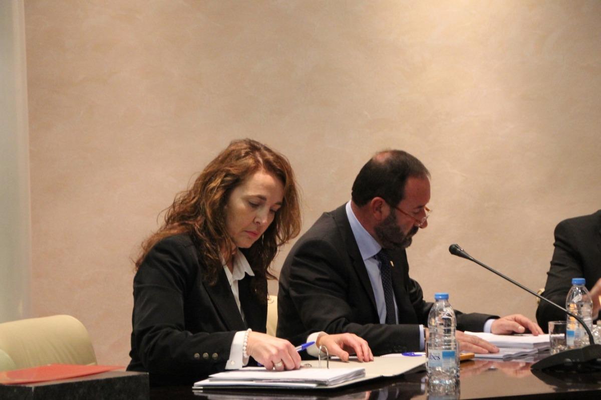 El Tribunal Constitucional admet el recurs d'empara de Lafoz i Troguet sobre els drets dels consellers de l'oposició