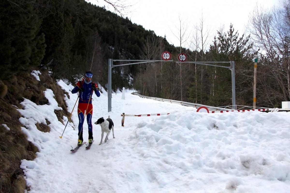 L'esquiador David Albós entrena per un dels circuits d'esquí de muntanya del coll d'Ordino.