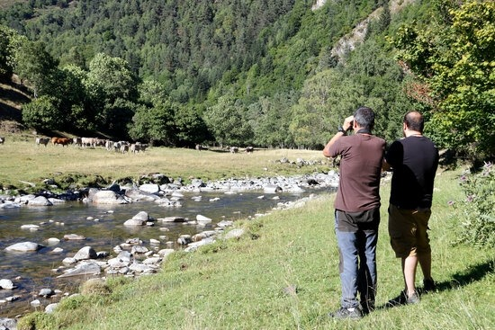 Vall de Bonabé, al Pallars Sobirà.
