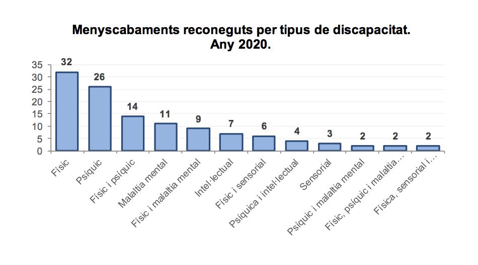 Tipus de discapacitats reconegudes al 2020.