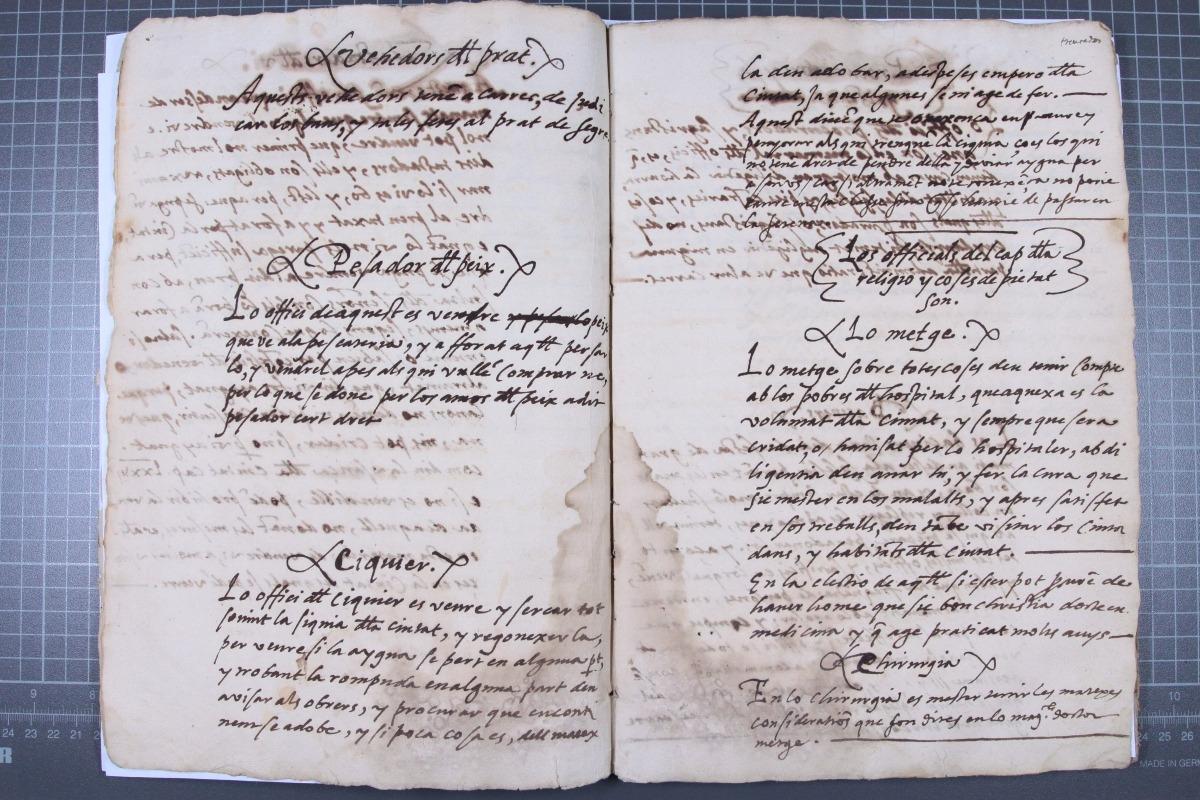 Alguns dels oficis que Jeroni Grau regula al llibre: veedors del prat, pesador del peix, siquier, metge i quirurgià.