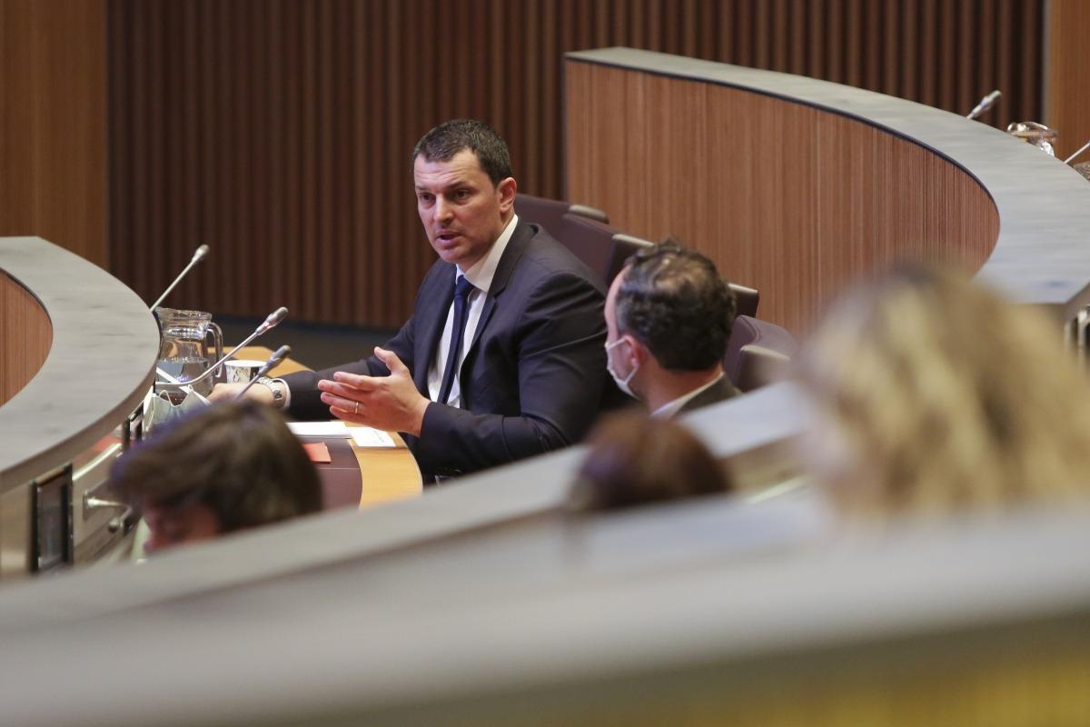 El ministre de Presidència, Economia i Empresa, Jordi Gallardo, en un moment de la seva intervenció ahir al Consell General.