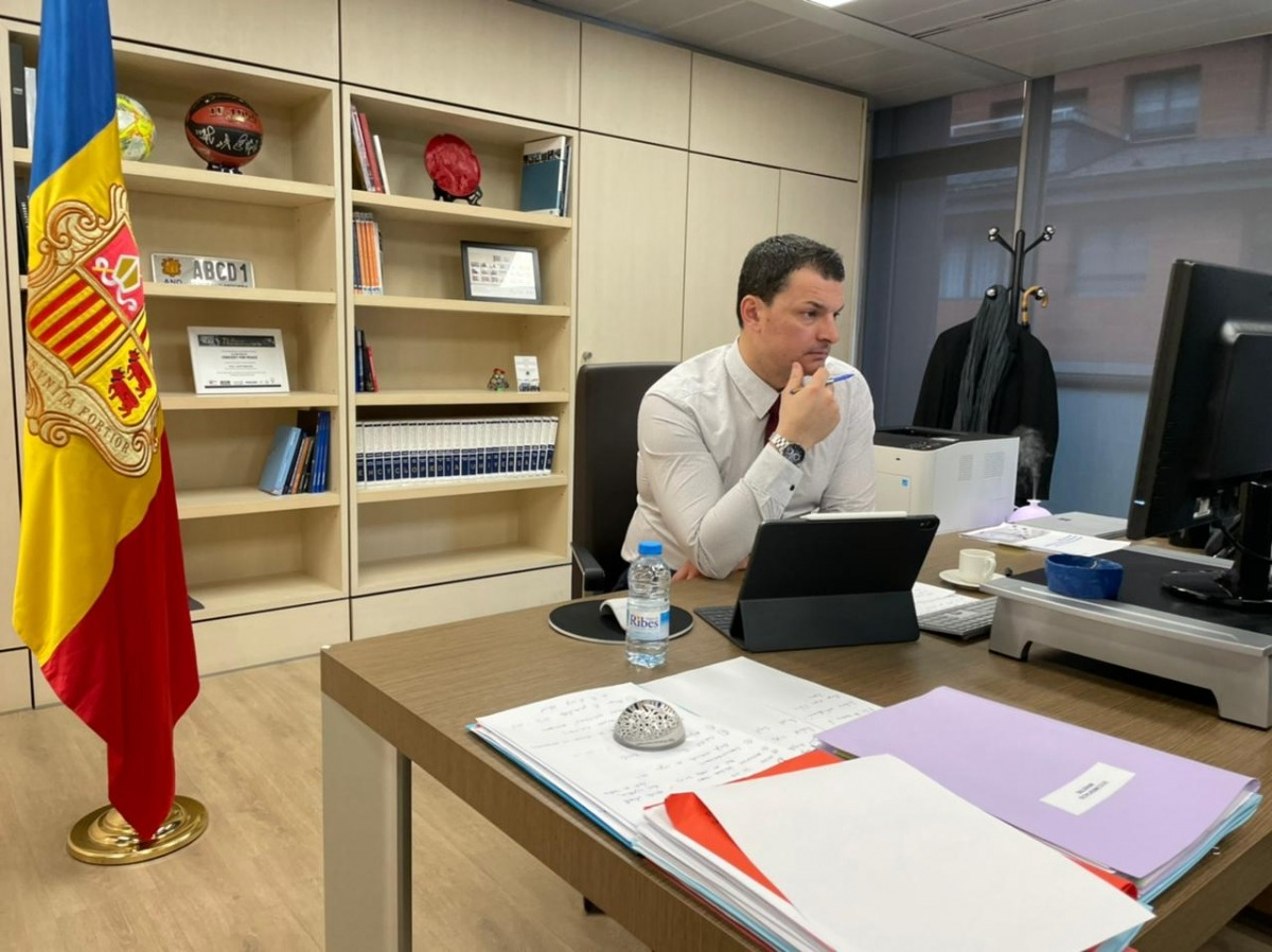 El ministre de Presidència, Economia i Empresa, Jordi Gallardo, ha presidit la reunió telemàtica del Consell Econòmic i Social.