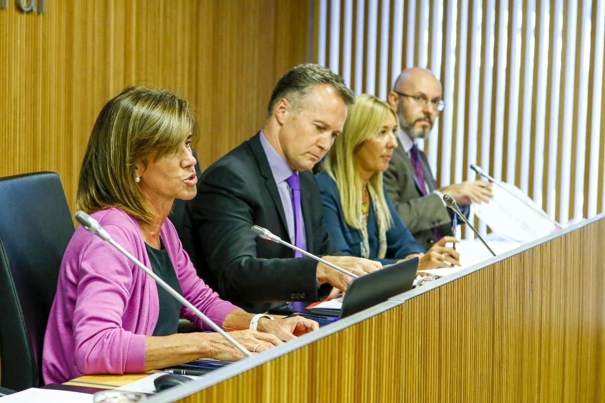 Un moment de la compareixença d'Ester Vilarrubla davant la comissió legislativa d'Educació, Recerca, Cultura, Joventut i Esports.