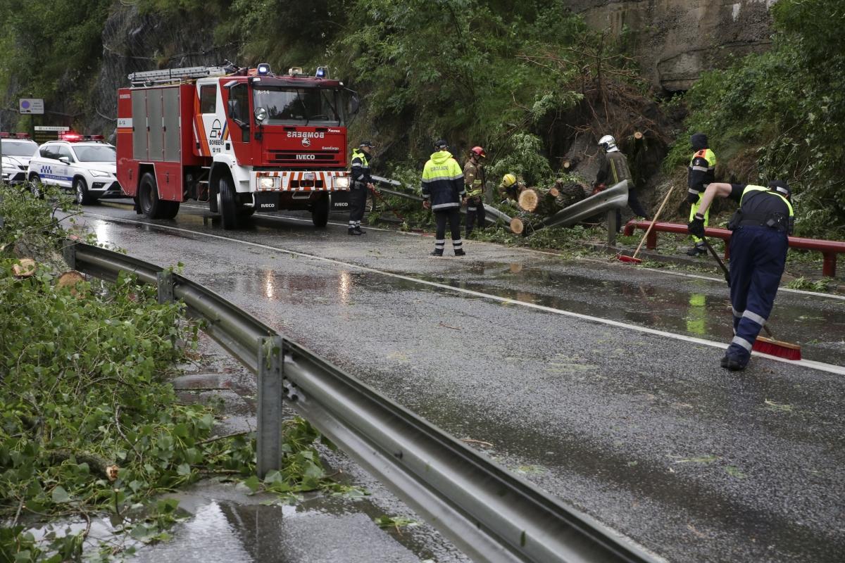 Moment en què els bombers han procedit a retirar l'arbre caigut a la CG-3.