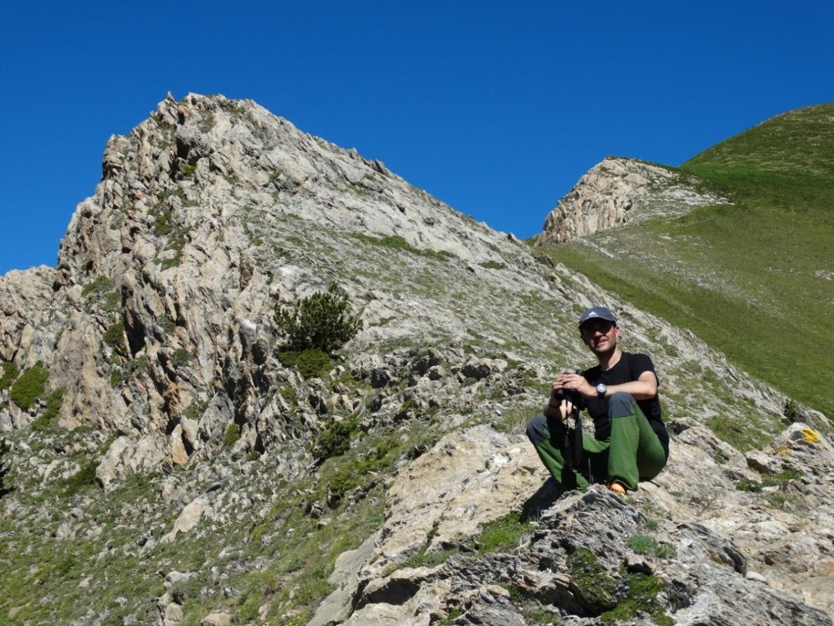 Chimenea, diumenge passat a l'Alt de la Capa, comprovant l'estat del polet de voltor que la parella que hi nia des de fa quatre anys.