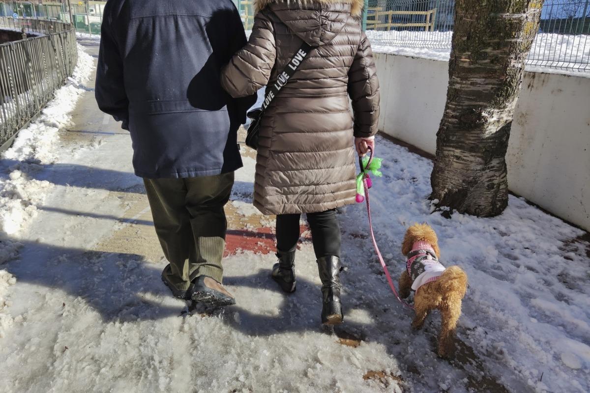 Els propietaris de gossos difunts s'adrecen a Medi Ambient per donar-los de baixa.