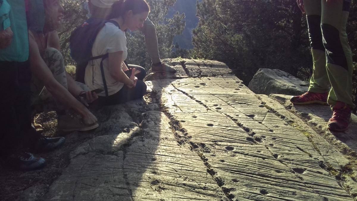 La terrassa superior del roc de les Bruixes, al juny.