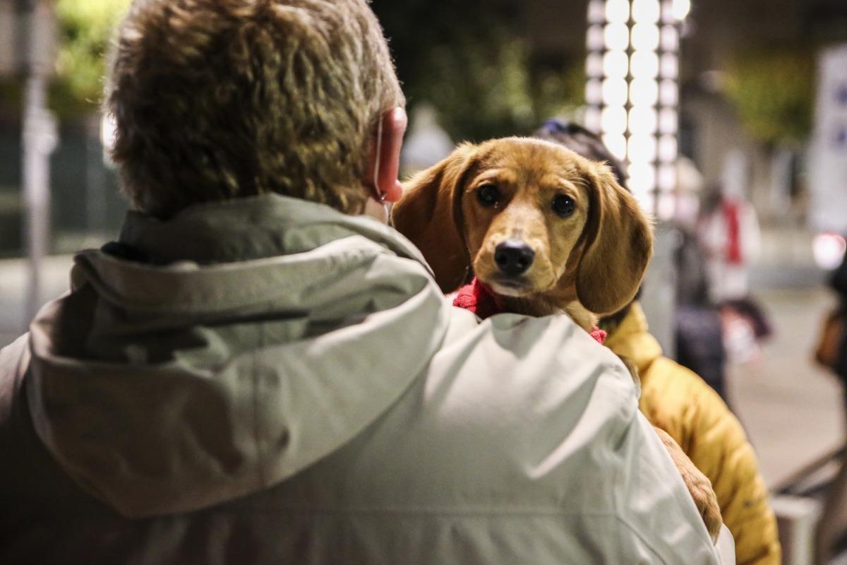 Un home amb un gos a coll.