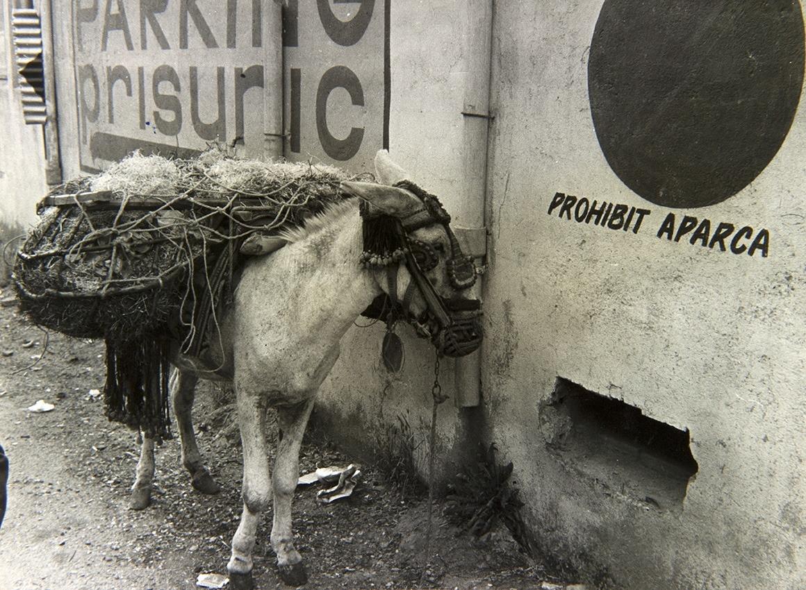L'ortografia no era el fort de la cartelleria urbana cap al 1979. La fotografia va ser publicada al 'Diario de Barcelona'.